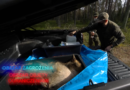 Film instruktażowy dla leśników i myśliwych ukazujący postępowanie prewencyjne w przypadku ASF.